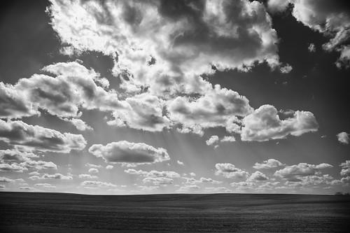 greaterminnesota minnesota nerstrand blackandwhite clouds farm farmland field monochrome rural sky sun unitedstatesofamerica
