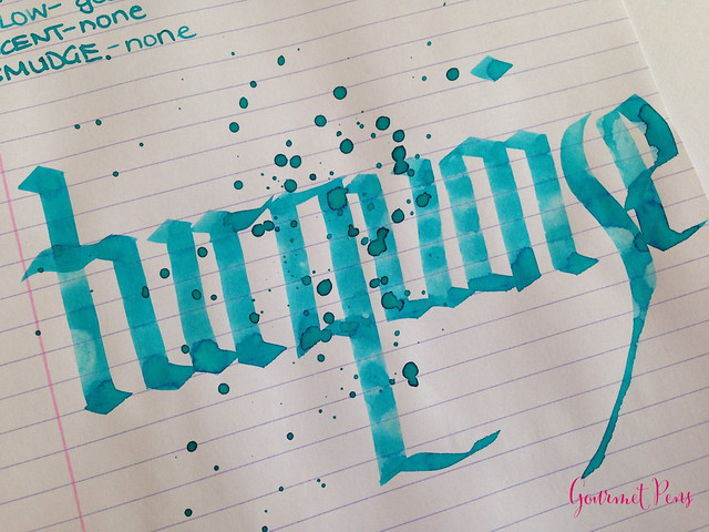 Toucan Turquoise Ink Review 6