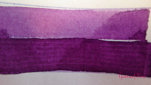 Toucan Violet Ink Review 4
