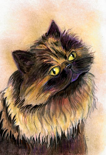 Comic Expo Pet Sketch: Bernie the Cat: purpleponyart