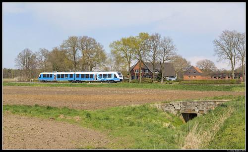 Bentheimer Eisenbahn VT 113, Esche