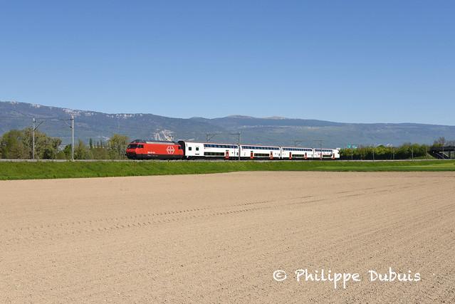 CFF: Re 460 006 à Chavornay