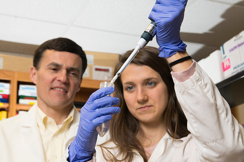 Professor Doug Martin of Auburn University's College of Veterinary Medicine and recent graduate Cassie Bebout conduct research in the college's Scott-Ritchey Research Center.