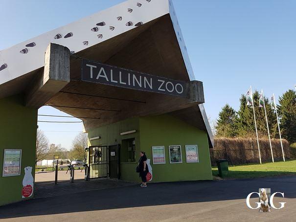 Besuch Zoo Tallin 27.04.20191
