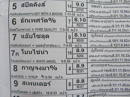 タイ競馬のカップリング