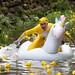 2019_05_18 Duck Race 2019