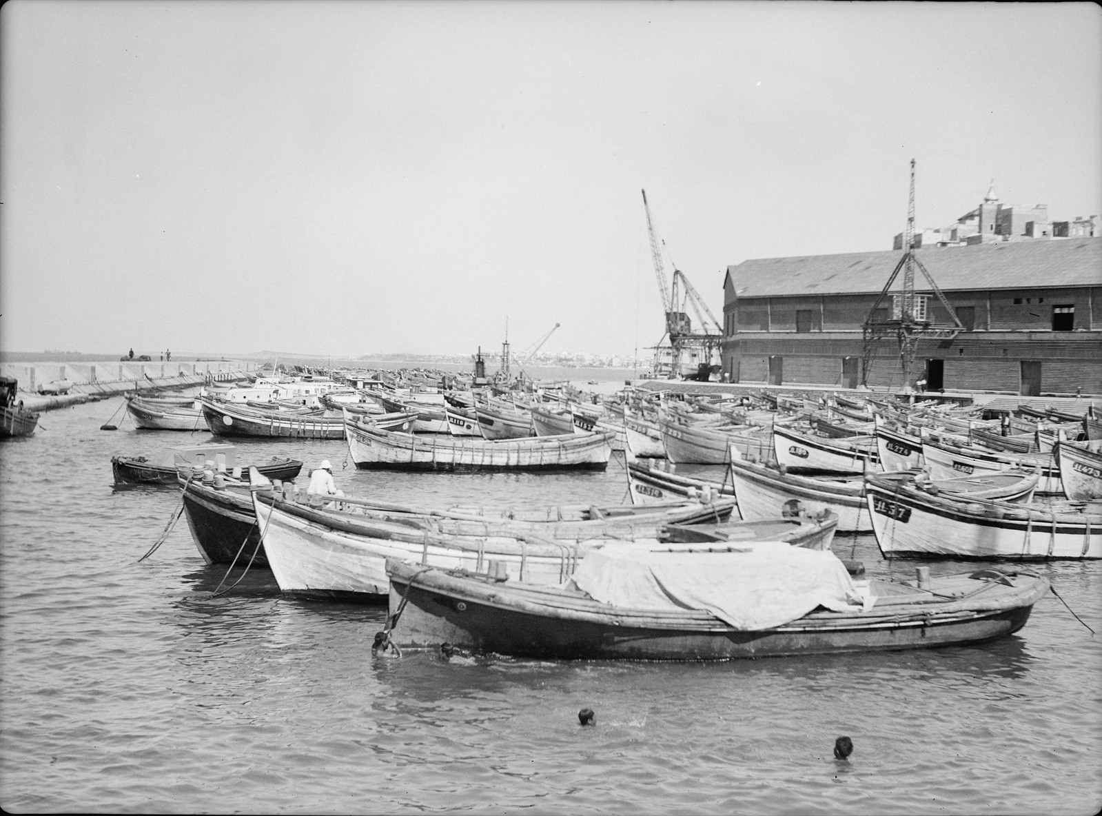 05. Яффская гавань в течение шести месяцев забастовки
