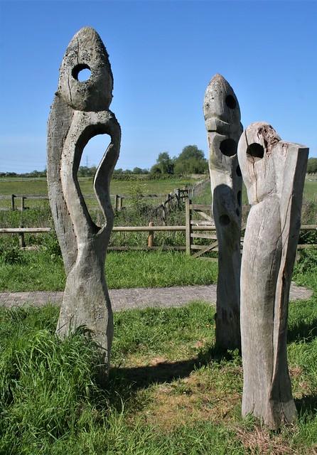 Shapely Sculptures