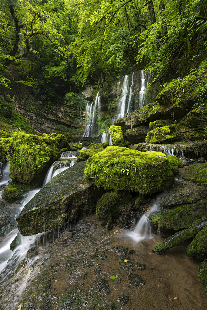 Waterfall in the jungle - Cascade du Verneau