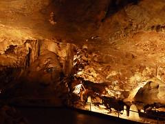 Koněpruské jeskyně – 400 milionů let zpět do tropických časů
