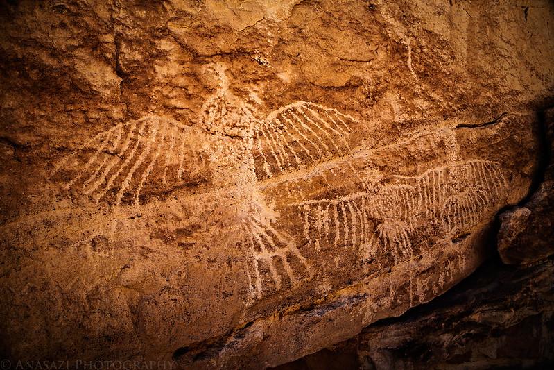 California Condor Petroglyphs