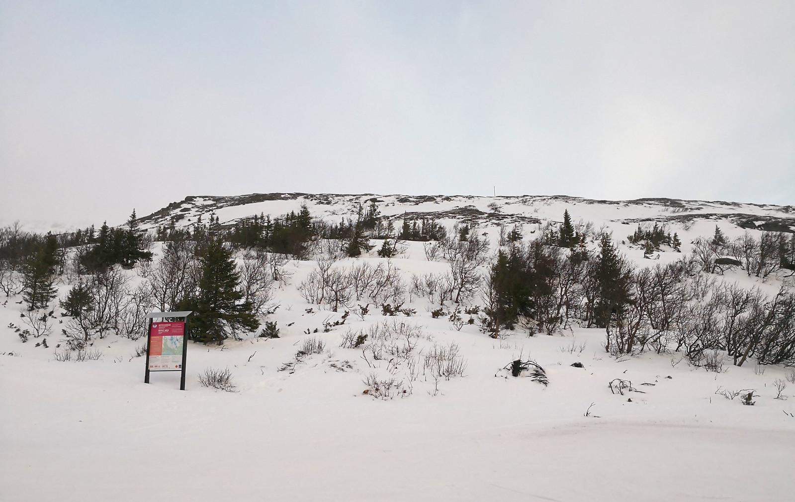 At the top of Fjällgårdsexpressen