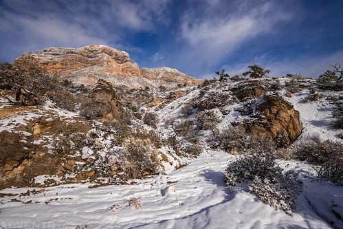 La Madre Mountain | by IntrepidXJ
