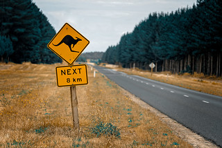 Kangaroo Sign | by Bloody Nick