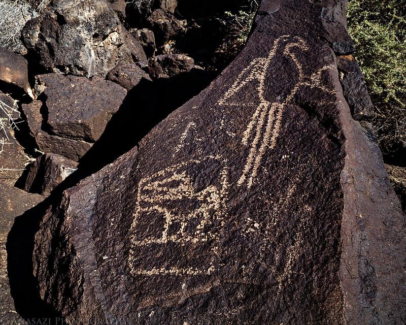 Macaw Petroglyph