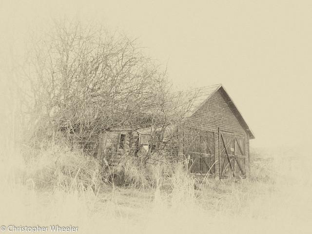 Vintage Subject - 119/365 - 2017