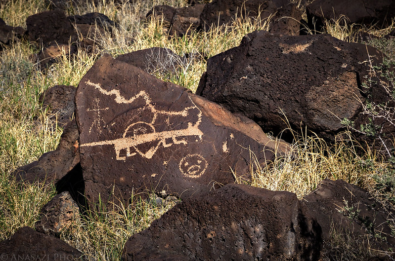 Rinconada Canyon Petroglyphs