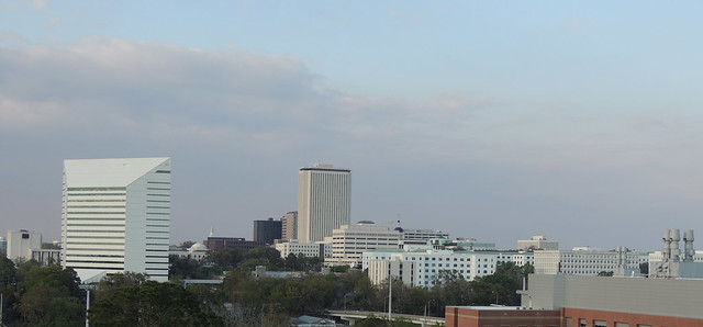 33711333286 d14134c174 z Northern View of Tallahassee Floridas Skyline from the Top of the College of Pharmacy and Pharmaceutical Sciences Building  :  6609