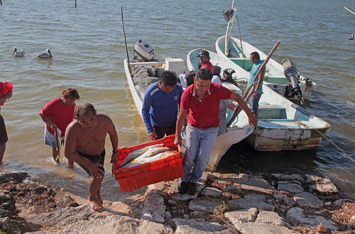 The Champotón Fishermen