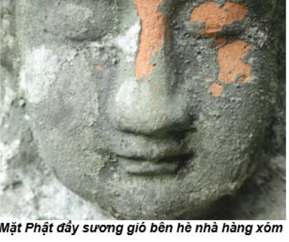 Mai Thanh Truyet 005