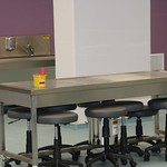 Prof. Dr. Sami ZAN Anatomi Diseksiyon Laboratuvarı 2