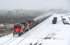 04-12-2019 Just Snow