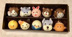 Japanese animal chocos