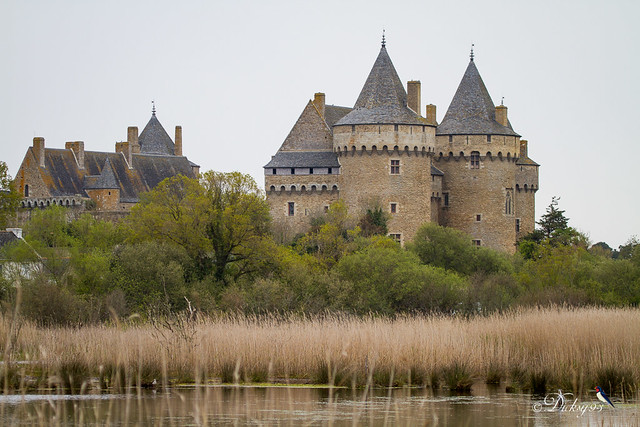Château et marais de Suscinio
