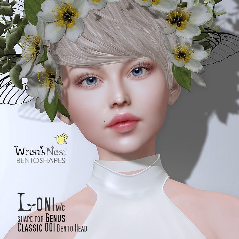 Loni Shape for Genus Classic 0001 head