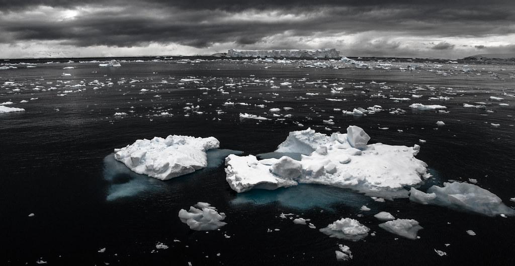 ... Paradise Harbour, penisola antartica (02) ...
