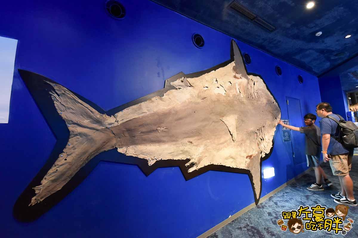 沖繩美麗海水族館-105