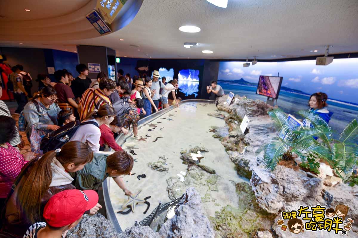 沖繩美麗海水族館-67
