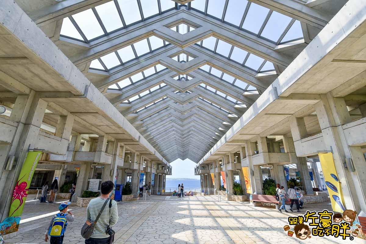 沖繩美麗海水族館-65