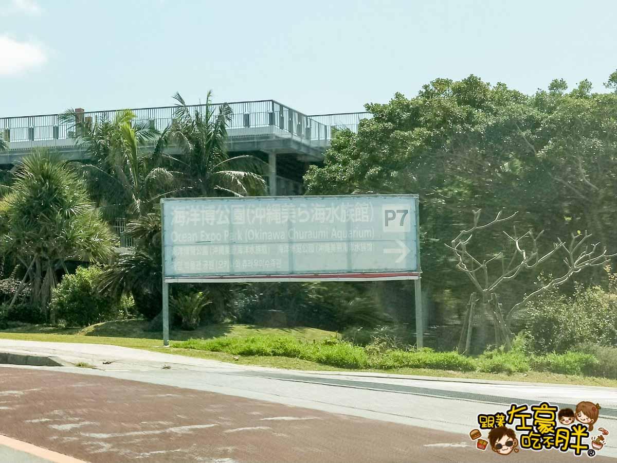 沖繩美麗海水族館-56