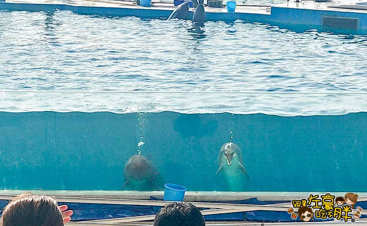 沖繩美麗海水族館-21