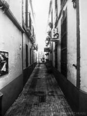 Vanishing Point in Alleyway