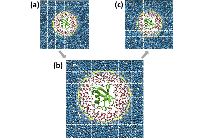 Adaptive resolution situation (AdResS) simulation of an atomistic protein, its atomistic hydration shells and CG water particles. The dashed lines illustrate the spatial domain decomposition. When going from (a) to (c), the effects for load imbalance get mitigated.