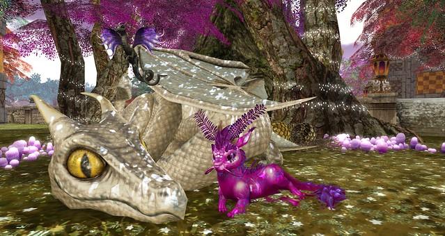 A Trio Of Dragons