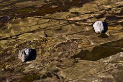 2 Rocks on the Coastal Plateau at Clifton