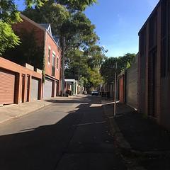 Light and shadow play on lanes in Glebe, Sydney - #lightandshadowplayonlanes #light #shadow #lane #Sydney #Glebe #urbanstreet #urbanfragments #urbanandstreet #streetphotography #trees #garbagebins