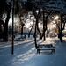 Alone in shadows by Through_Urizen
