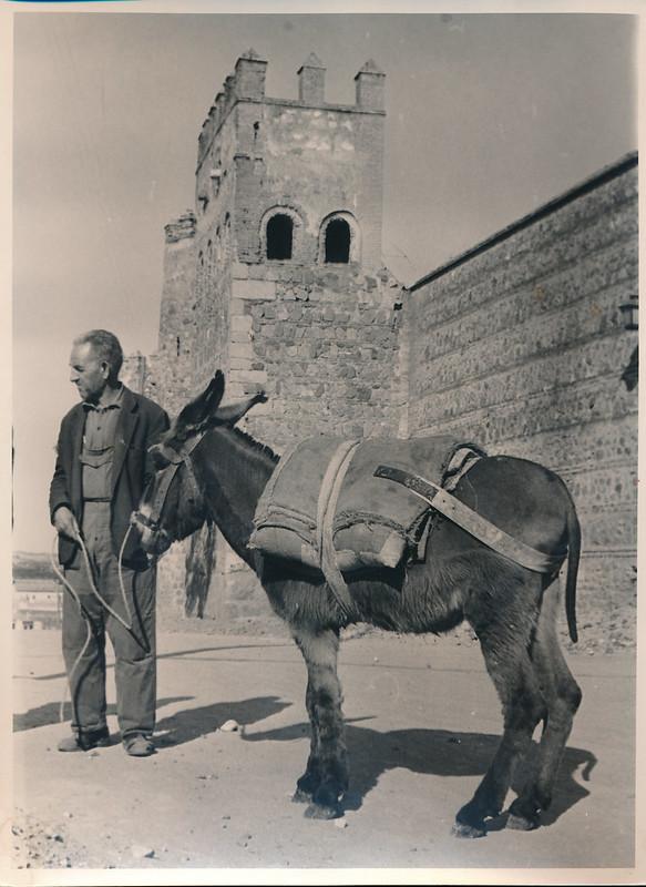 Un burro junto a las Torres de la Reina a mediados del siglo XX. Fotografía de Victoriano de Tena Sardón