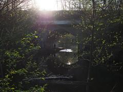 Poznan - Antoninek. Railroad Bridge I 作者 kachigarasu PL (busy)