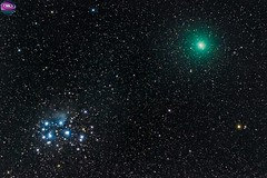 Comet 46p-Wirtanen and the Pleiades / Cometa 46p-Wirtanen y la Pleyades