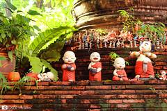 Thai_028
