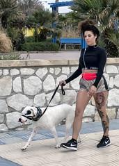 Cuidado con el perro - Beware of the Dog
