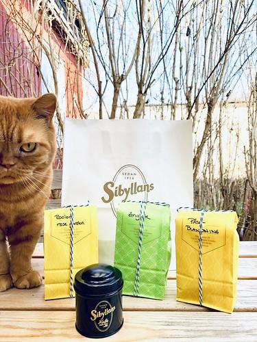 tea from sibyllans te & kaffehandel, stockholm, sweden, easter 2019