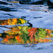 Swift River Puddle by Markus Jork