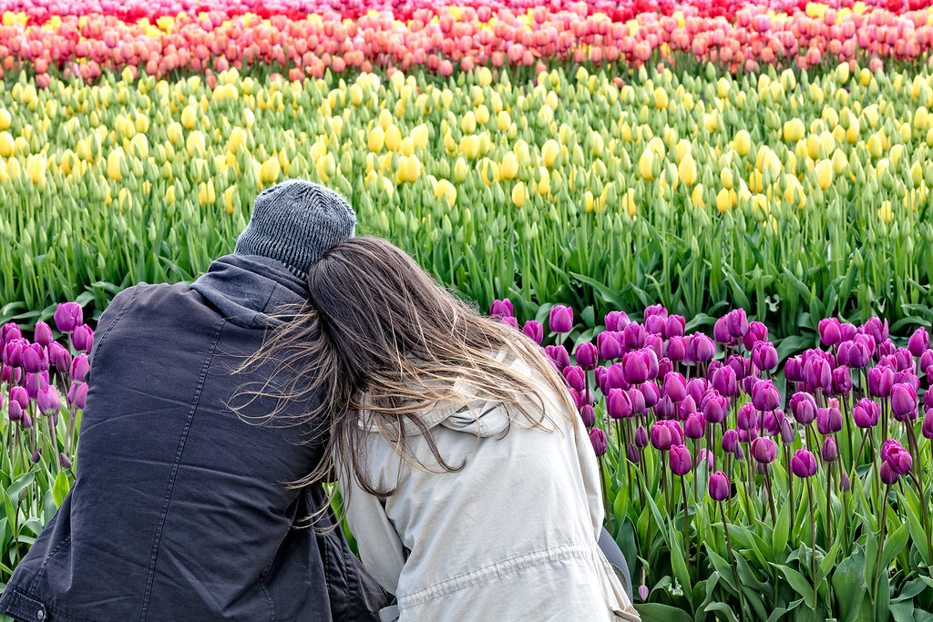 Couple at Tulip Town