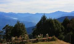 Dochula Pass 3050m en route Punakha (68)